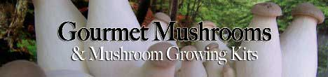 Click Here for Mushroom Products